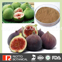 Bulk Supply 100% Nature ficus carica fig fruit extract