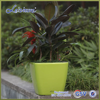 3115 Disposable Plastic Flower Pot