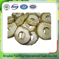 Non Fried Apple Chips Processing Plant