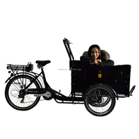 Aluminium alloy frame family cargo used 3-wheel motor tricycle
