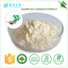 wholesale alibaba medicine manufacturers in china American ginseng extract ginsenosides 80%