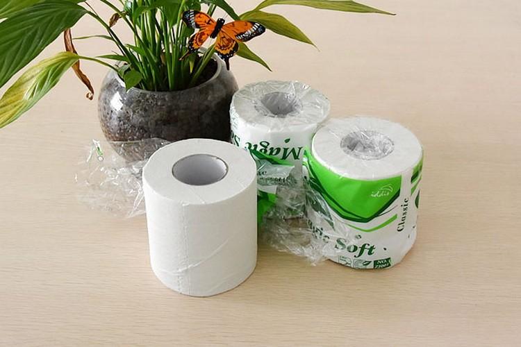 Toilet Paper13-04