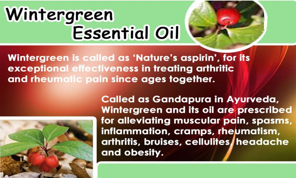 Organic Natural bp Wintergreen Essential Oil Methyl Salicylate OEM Supply