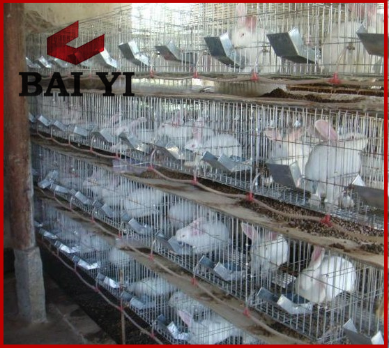 Cheap industrial cages for rabbit