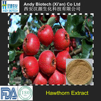 Best Selling Popular Flavonoids 5% hawthorn berry extract powder