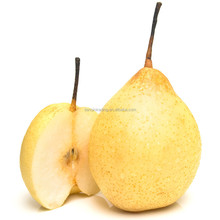 fresh ya pear&new crop&the most lowest price