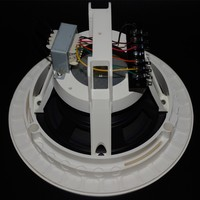CS-610T 8 ohm bluetooth white ceiling speakers low power amplifier