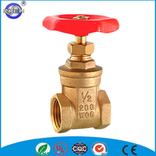 China manufacture 4 inch water Pn16 brass gate valve with prices