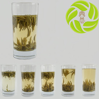 Hot selling organic tea junshanyinzhen high mountain green yin zhen tea yellow tea