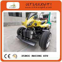 HIGH QUALITY OF 250cc racing atv with EEC certificate