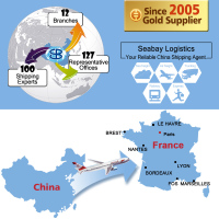 Cheap air france freight cargo to france