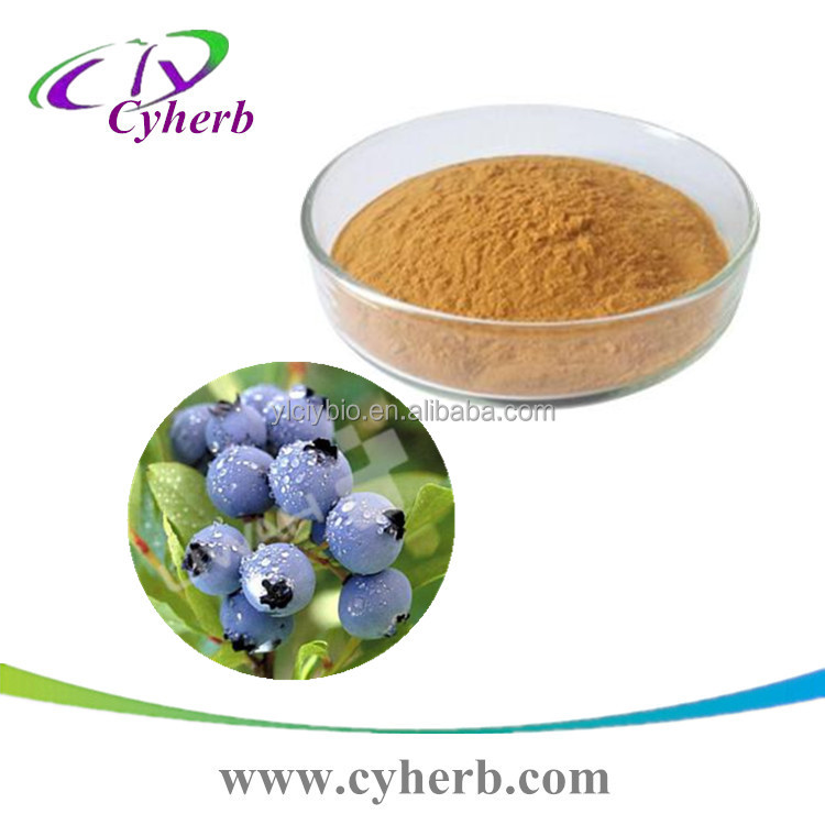 Selling Well all Over the World Pure Natural Anthocyanin 25% Bilberry Extract
