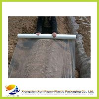 LDPE plastic film on roll