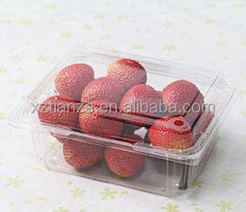 PP food container/ disposable plastic food container/factory price