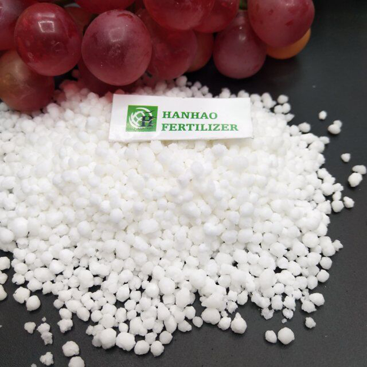 agriculture use prilled ammonium nitrate for sale