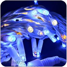 LED String Lights 10M 100leds Rubber Cable Clear Blister Light Bulb