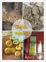 gold cyanide process for gold mining/gold plant