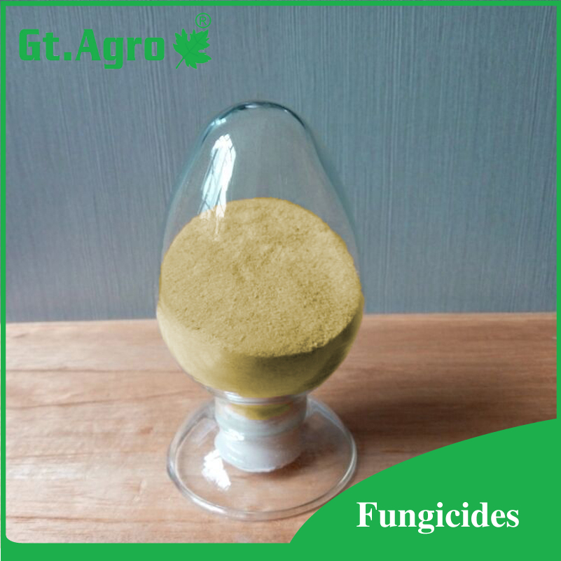 agrochemical pesticide price mancozeb 75% WP 80%WP fungicide