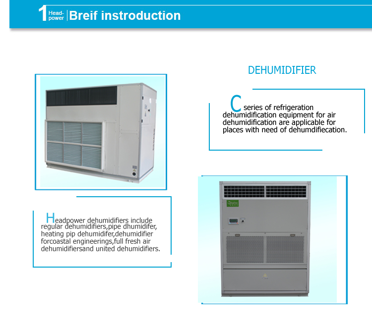 Refrigerant Flow Heat Pump Swimming Pool Dehumidifier Free Blowing Type -  Buy Refrigerant Swimming Pool Dehumidifier,Swimming Pool ...
