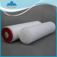 "0.1um PTFE filter cartridge, 20"" core sus316 o-ring silicon for H2SO4 filtration"