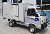 Electric Cargo Van