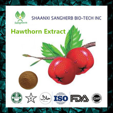 Factory Supplier hawthorn powder extract / Hawthorn Berry extract maslinic acid from China famous supplier