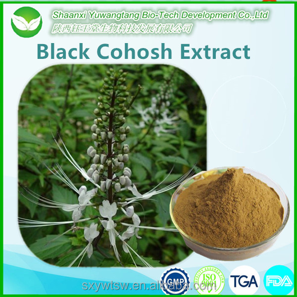 Natural Black Cohosh Extract Powder Triterpene Saponins 2.5% 8%