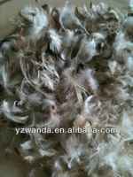 4-6cm washed grey duck feather