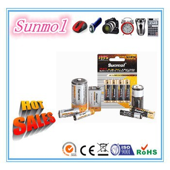 Long Life D/C/AA/AAA/9V Zinc Carbon Battery