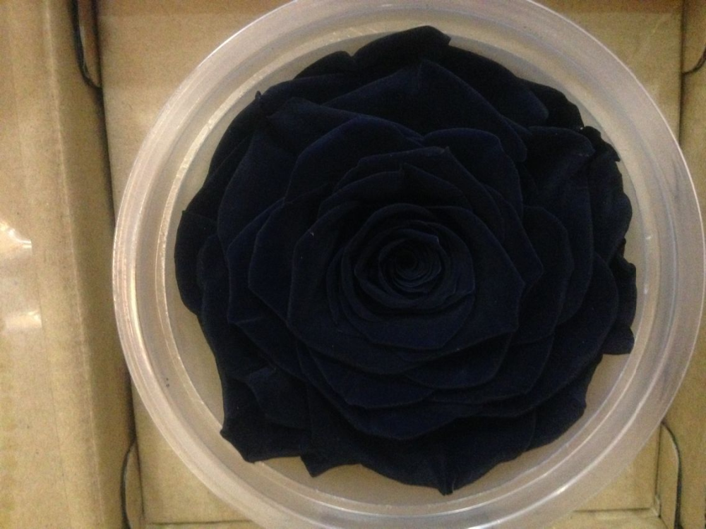 Natural Rose Flowers Natural Rose Flowers preserved Flowers Black Magic Roses From Kunming farms directly supply environmental