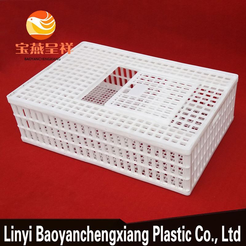 layer poultry farms live chicken transport box