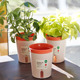 plastic flower pot office flower pots self-sinking small round flower pots