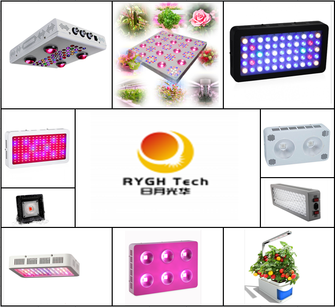 Home plant tent indoor smart garden full spectrum CE/RoHS hydroponics system vertical 10w table lamp led grow lights for office