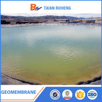 High Friction HDPE Liner Geomembrane