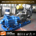 Diesel Engine Pump With CE Certificate
