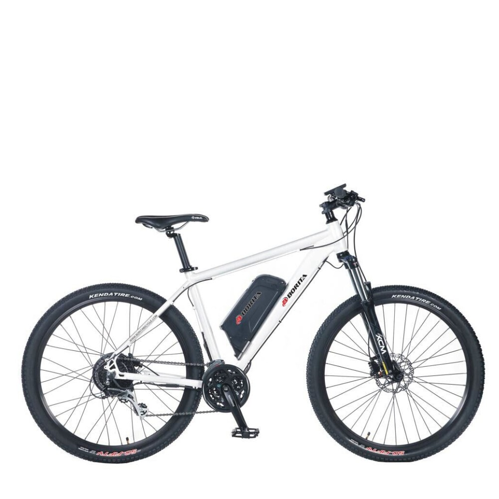 24 Speed Infinite Double Wall Rim Electric Bike
