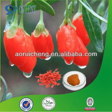 China High Quality fresh Goji Berry