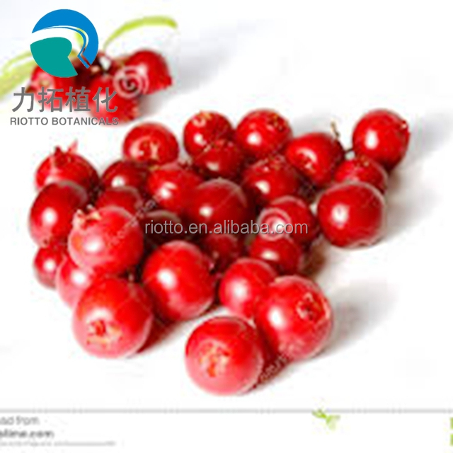 factory supply Cranberry Extract