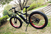 High quality sport style MTB electric bike with bottle battery 8fun hub motor