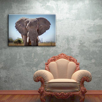 Elephant sample picture of home goods wall art canvas painting