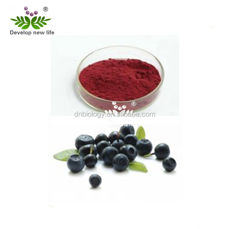 FDA&ISO Acai berry P.E./acai berry juice powder/acai berry extract anthocyanidins