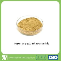 100% Natural Antioxidant Rosemary leaf Extract 5% Rosmarinic Acid Powder