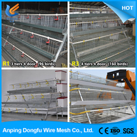 DONGFU automatic cheap chicken layer cage for sale