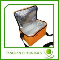 Hottest 12 bottle cooler bag,12 pack insulated cooler,12 volt cooler bag