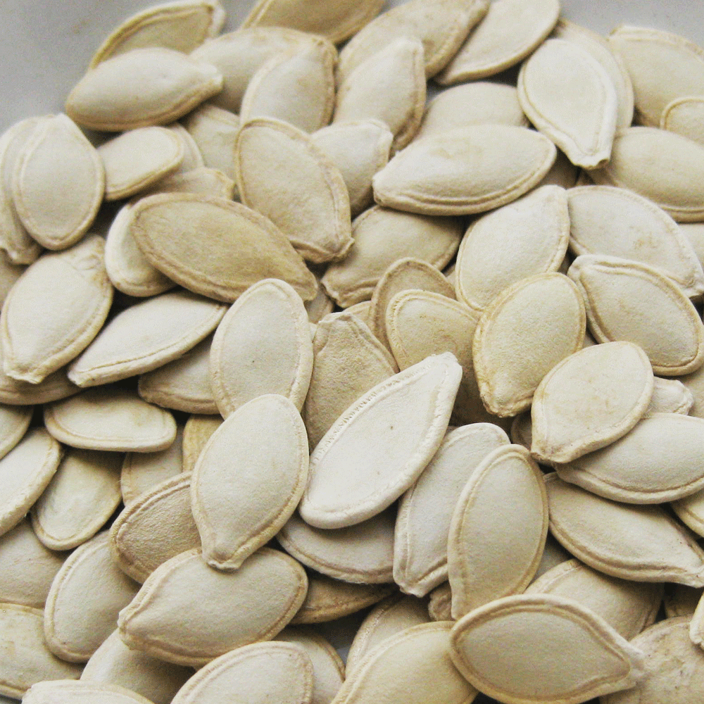 Chinese shine skin pumpkin seeds 2016 new crop