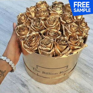 Custom Plastic Flower Beautiful Box For Many kinds of Rose