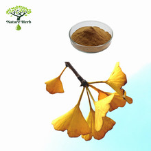 Extraction of Ginkgo biloba leaf extract by solvent extraction Ginkgo biloba powder