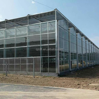 AGRICULTURE INDUSTRIAL PLASTIC GREENHOUSE FOR SALE