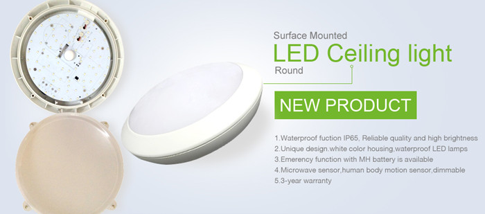 ceiling mounted led steam shower light,led shower lighting fixture,ip65 led lights for steam room