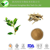 Sexual Enhancement Natural Brown Powder Form 2.5% withanolides ashwagandha extract